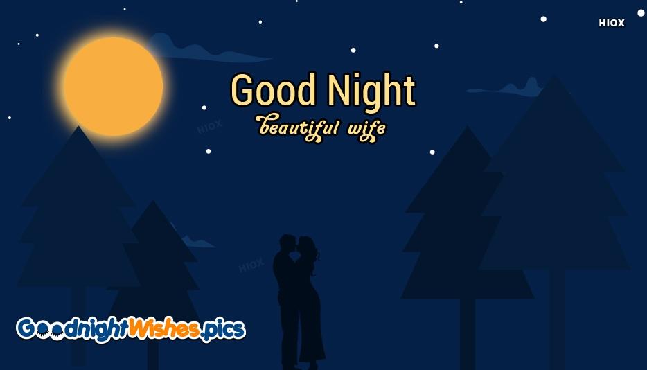 Good Night Beautiful Wife