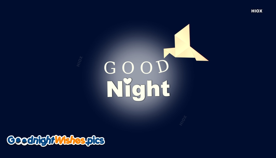 Good Night Bird