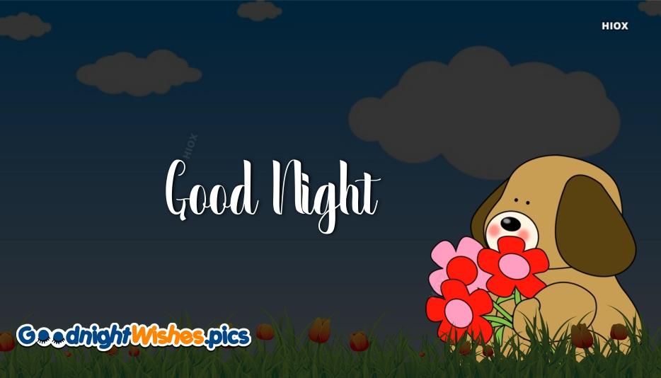 Good Night Dog