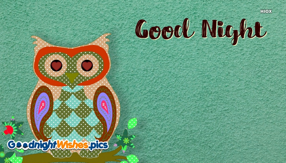Good Night Wishes With Birds