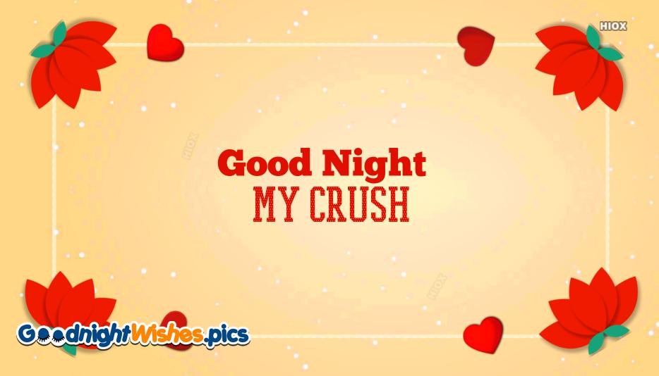 Good Night For My Crush