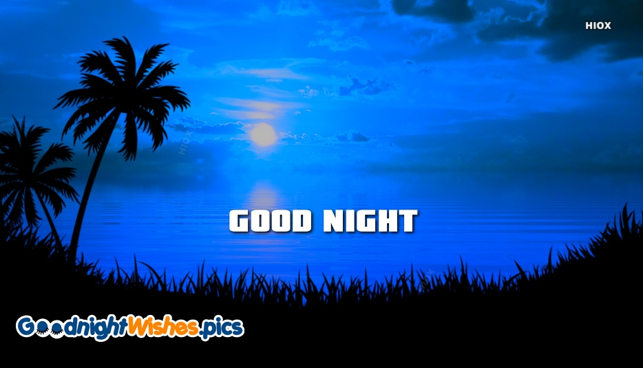 Good Night Palm Trees Images