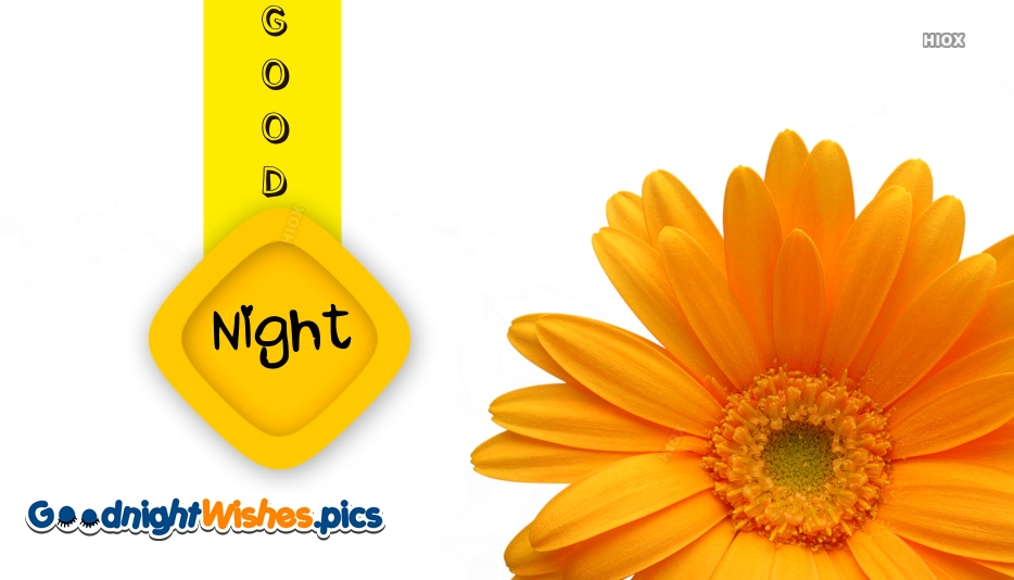 Good Night Images With Yellow Flowers