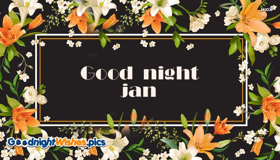 Good Night Jan