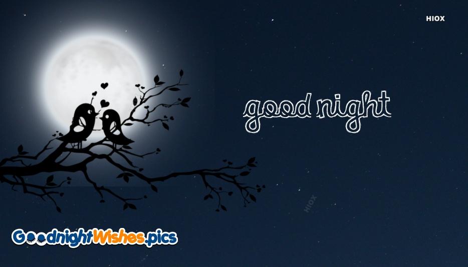 Good Night Love Image