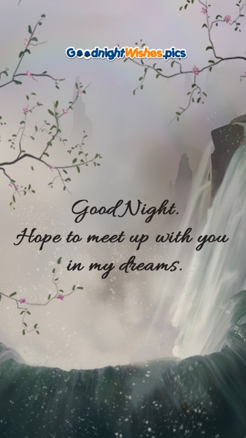 Good Night. Hope To Meet Up With You In My Dreams.