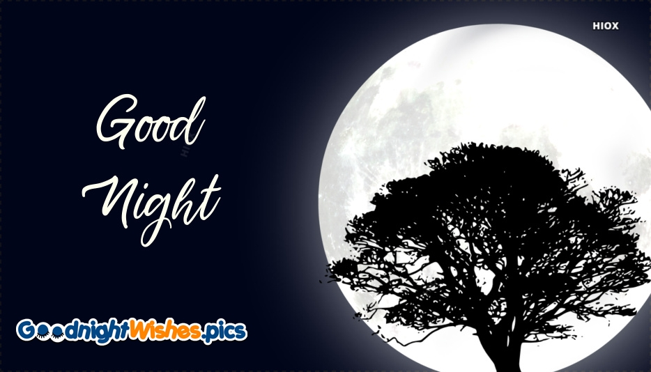 Good Night Moonlight