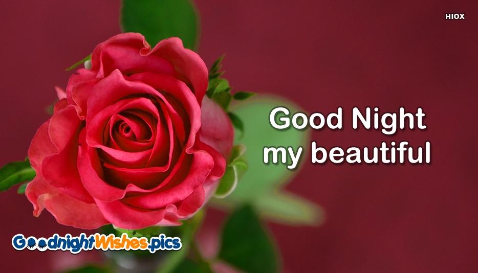 Good Night My Beautiful Rose