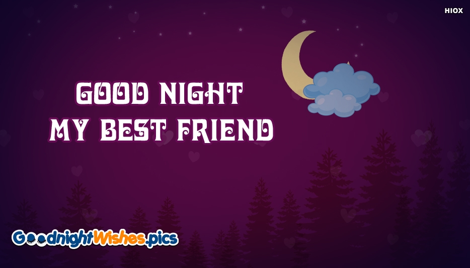 Good Night My Best Friend Quotes