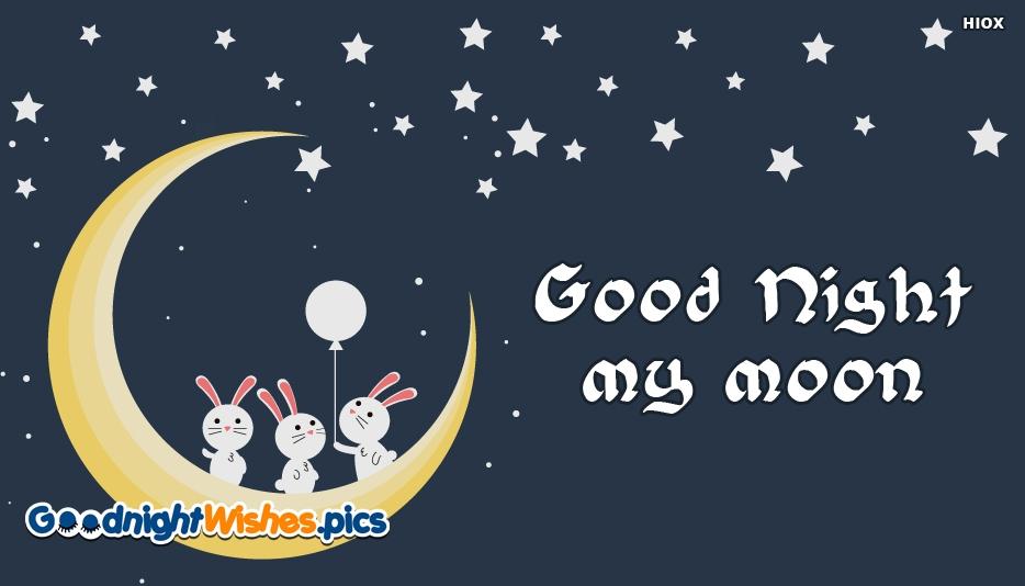 Good Night My Moon