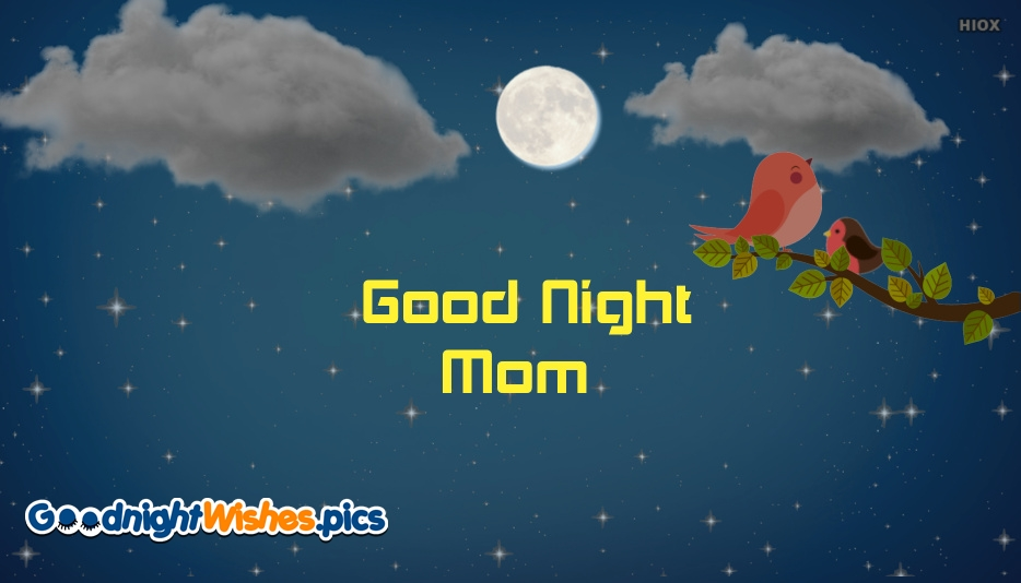 Good Night My Mother