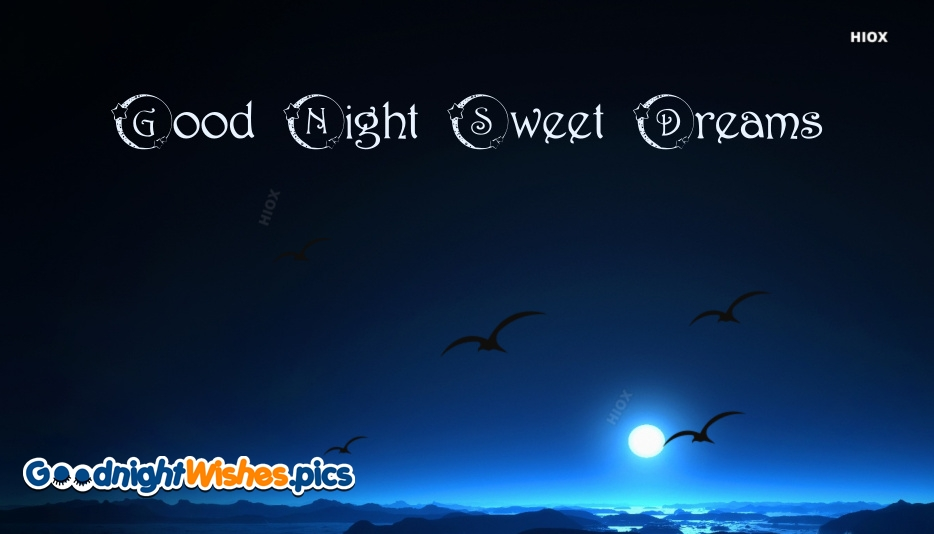 Good Night Sweet Dreams Bird