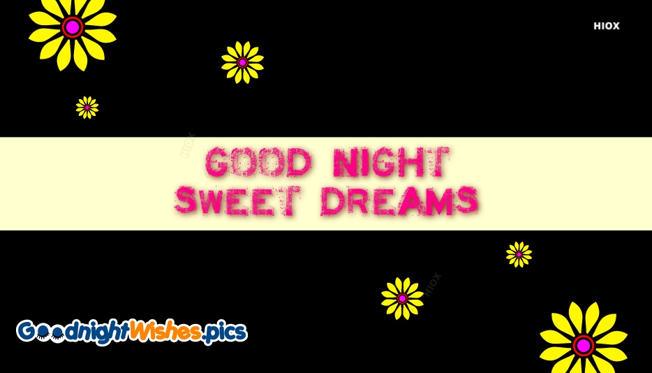Good Night Sweet Dreams English