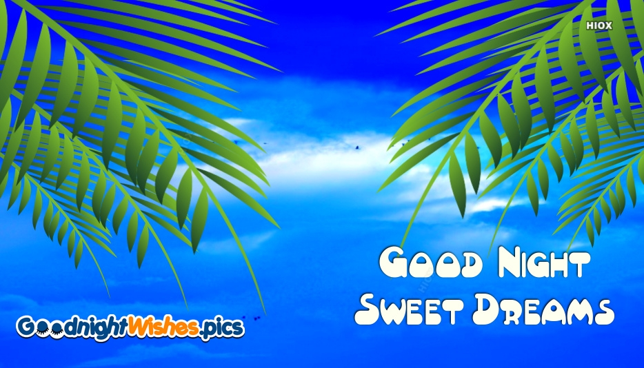 Good Night Sweet Dreams Images Download