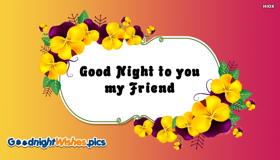 Good Night To You My Friend