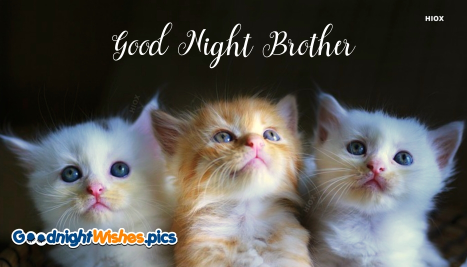 Good Night Wishes Brother