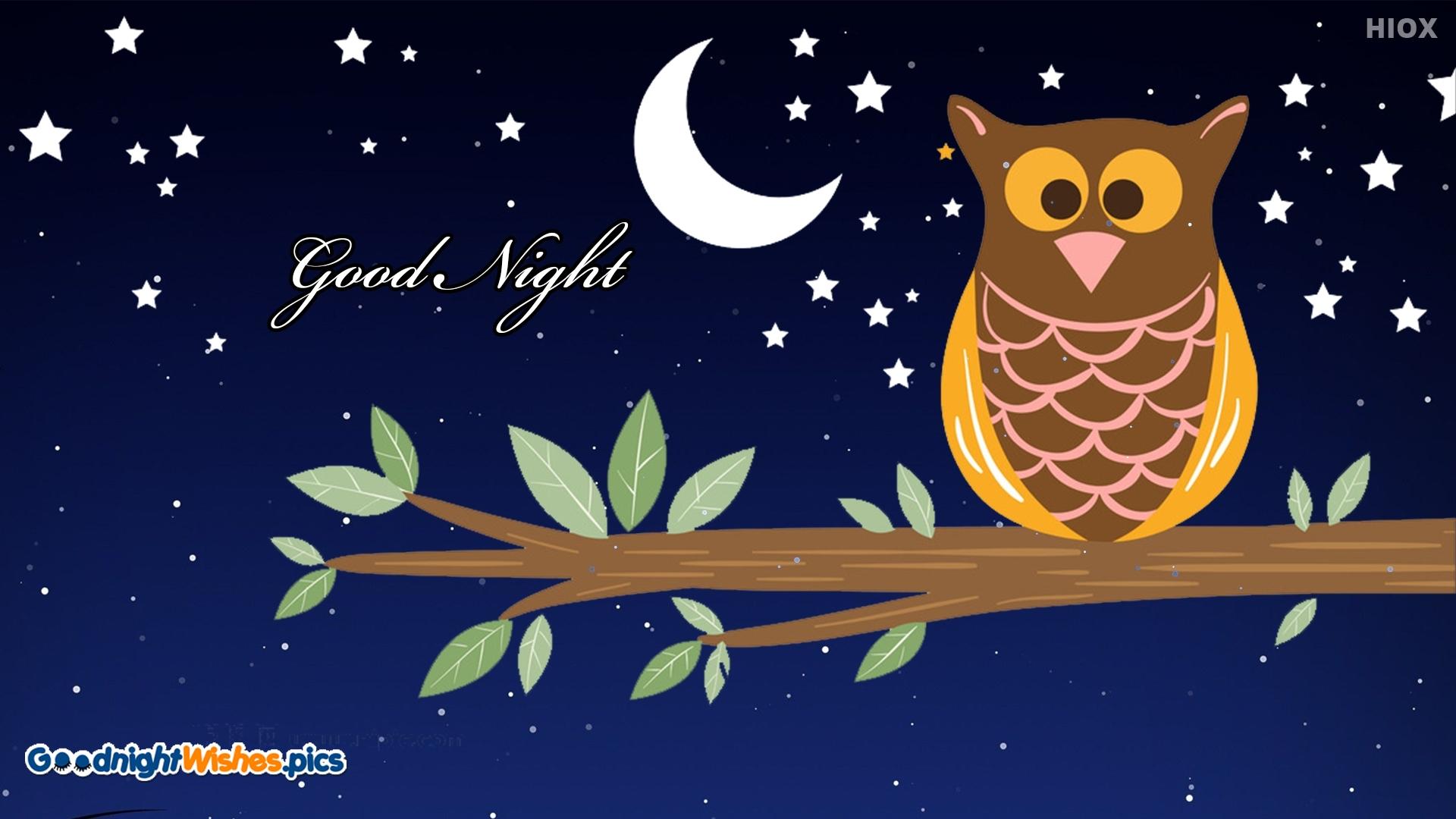 Good Night Wishes Cartoon