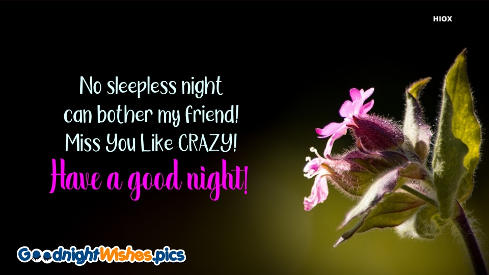 No Sleepless Night Can Bother My Friend! Miss, You Like CRAZY!