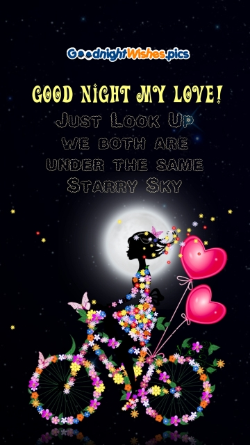 Good Night My Love Message For Girlfriend
