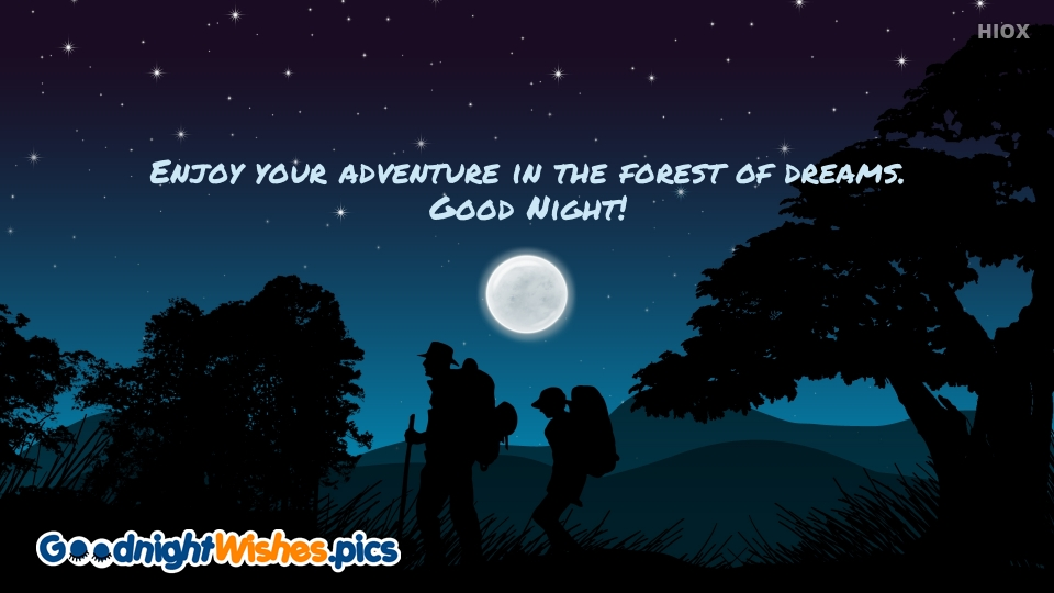 Good Night Wishes for Adventure