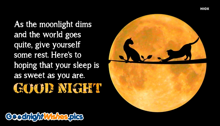 Good Night Wishes Quote | As The Moonlight Dims and The World Goes Quite, Give Yourself Some Rest. Here