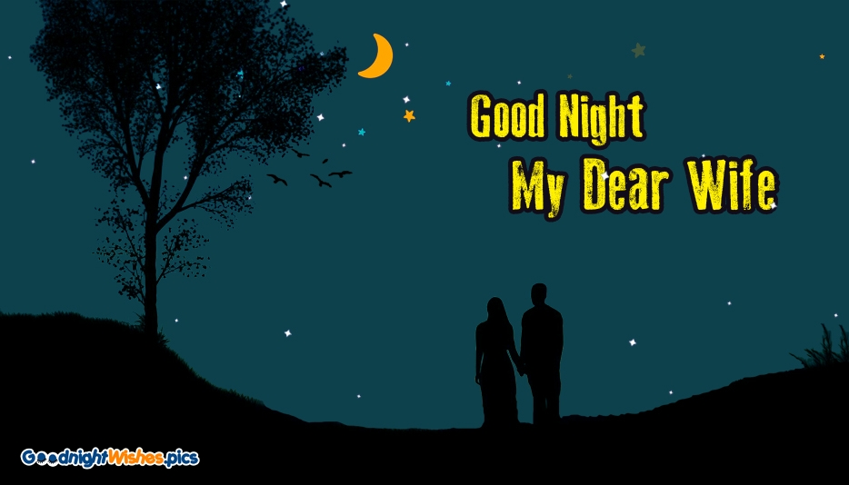Good Night Wishes to My Wife | Good Night My Dear Wife