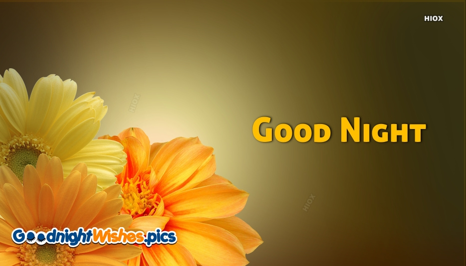 Good Night Wishes With Flowers