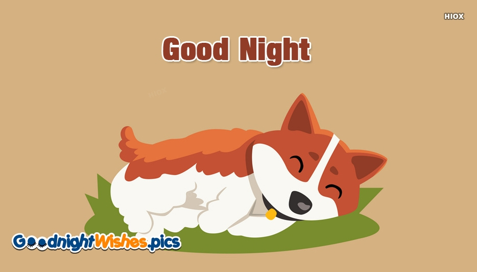 Good Night With Dog Images