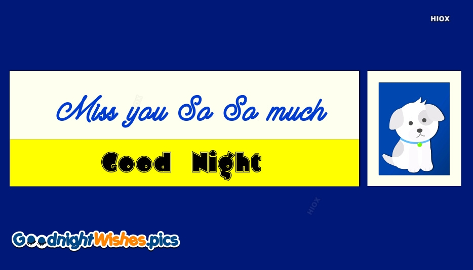 Good Night Pets Images, Quotes
