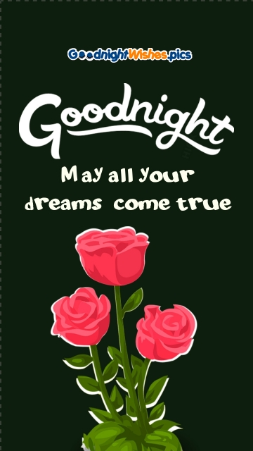 Good Night With Pink Rose