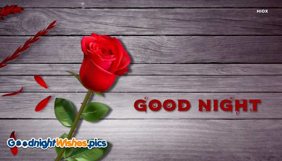 Good Night With Red Roses