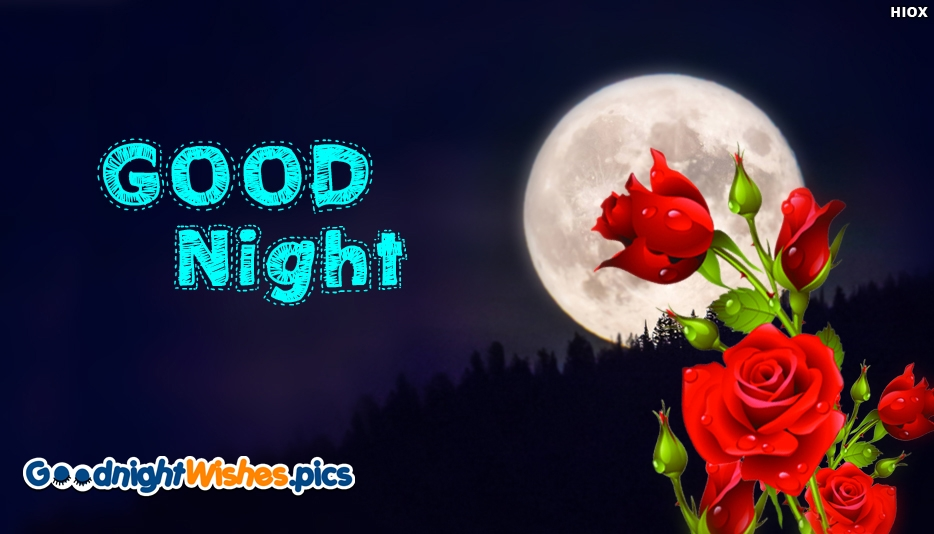 Good Night Rose Flower Hd Best Image Wallpaper