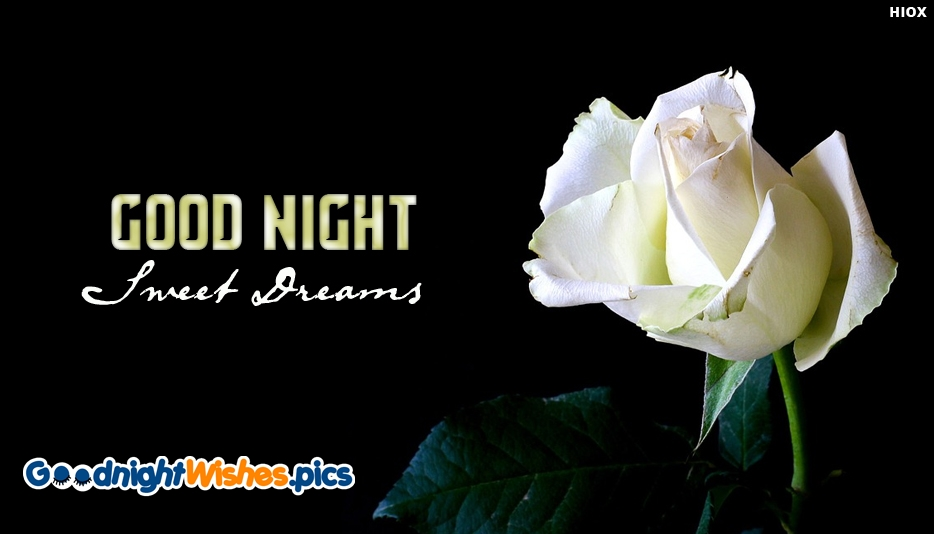 Good Night With White Rose - Good Night Sweet Dreams Images