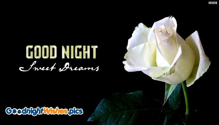 Good Night White Rose Images Best Hd Wallpaper