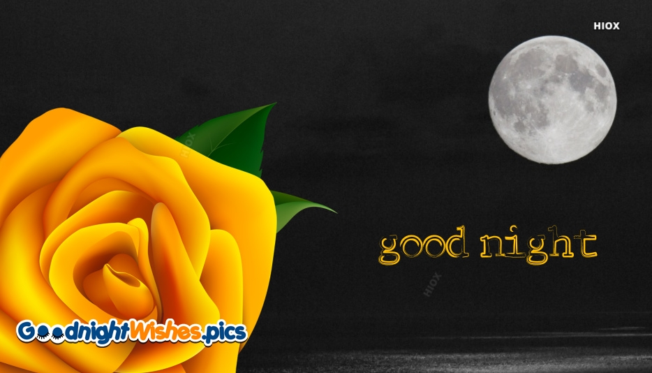 Good Night Yellow Rose Images, Pictures