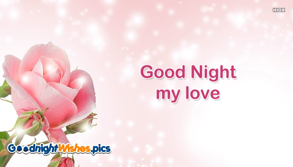 Good Night Pink Rose Images