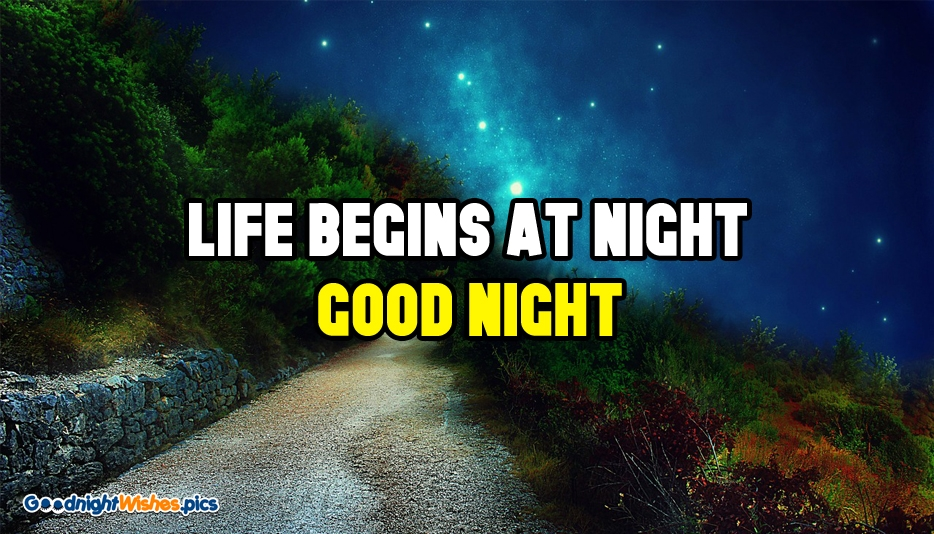 Life Begins at Night...Good Night @ Good Night Wishes