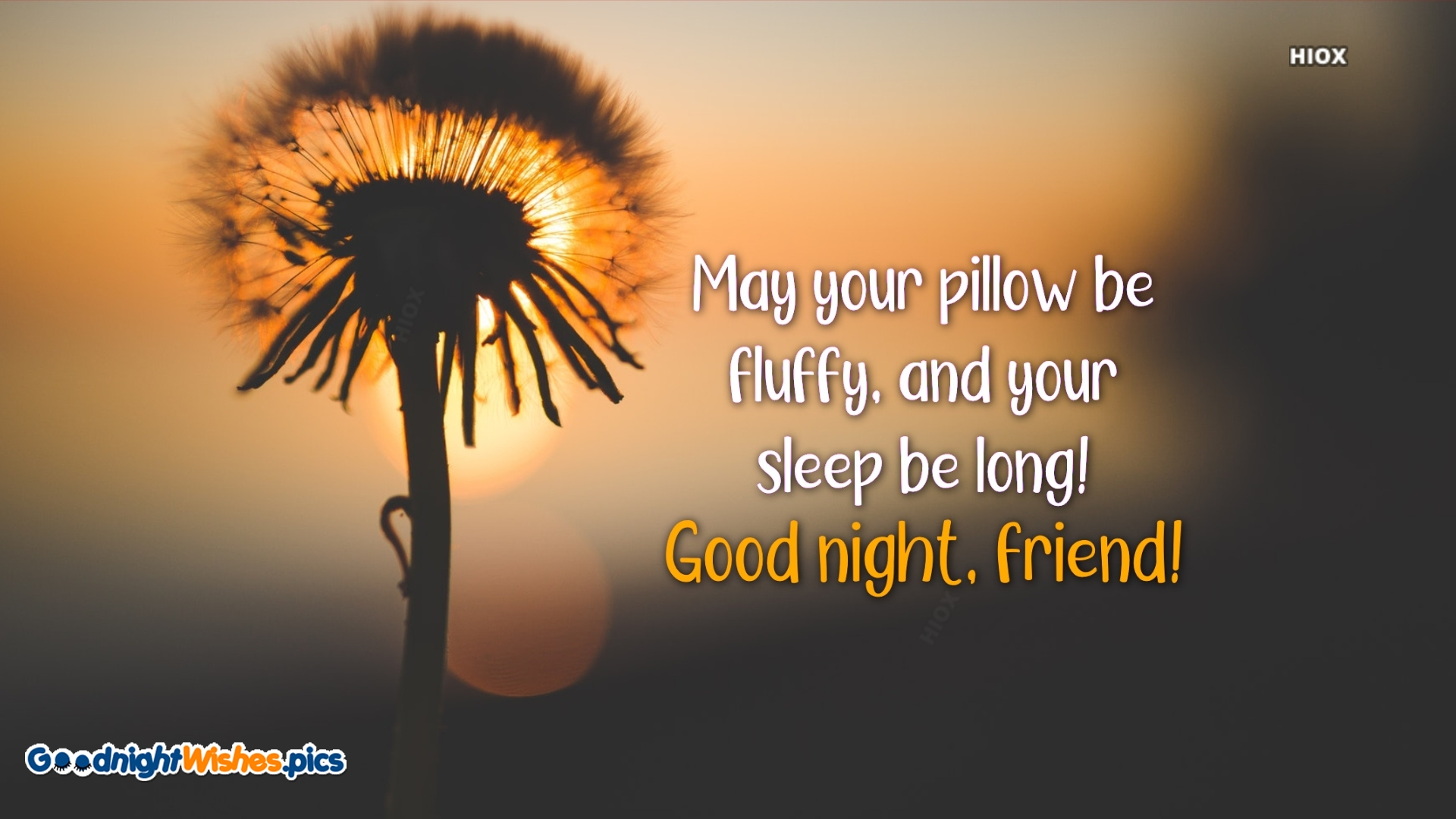 Good Night Friend Wishes Quotes