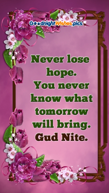 Never Lose Hope. You Never Know What Tomorrow Will Bring. Gud Nite.