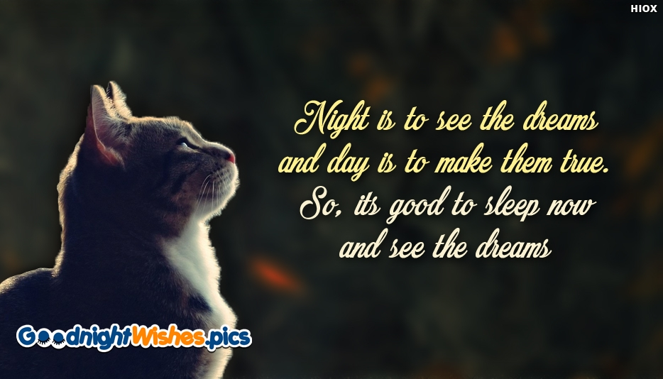 Night is To See The Dreams and Day is To Make Them True. So Its Good To Sleep Now and See The Dreams - Inspirational Good Night Wishes
