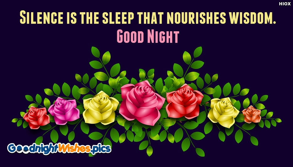 Silence is The Sleep That Nourishes Wisdom. Good Night - Good Night Wishes for Wallpaper