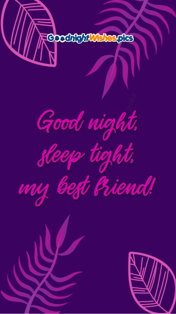Good Night, Sleep Tight, My Best Friend!