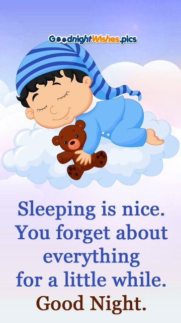 Sleeping is Nice. You Forget About Everything For A Little While. Good Night.