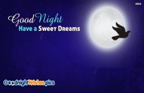 Best Goodnight Wishes Ever