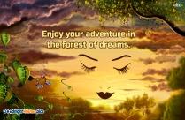 Enjoy Your Dreams.