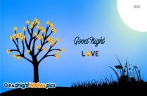 Good Night Wishes Love