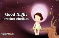 Good Night Brother Chellam