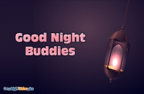 Good Night Buddies