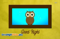 Good Night Cute