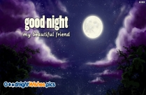 Good Night My Beautiful Friend